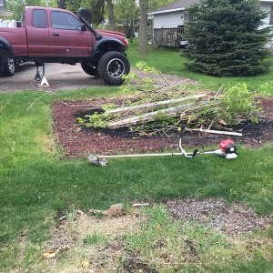 Went to town in my back yard with the saw blade.