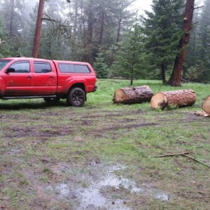 I hauled some wood today up at bear camp