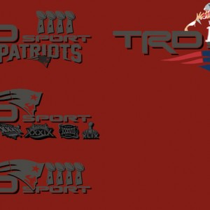 Pats Test Decals
