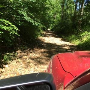 Creek Bed trail